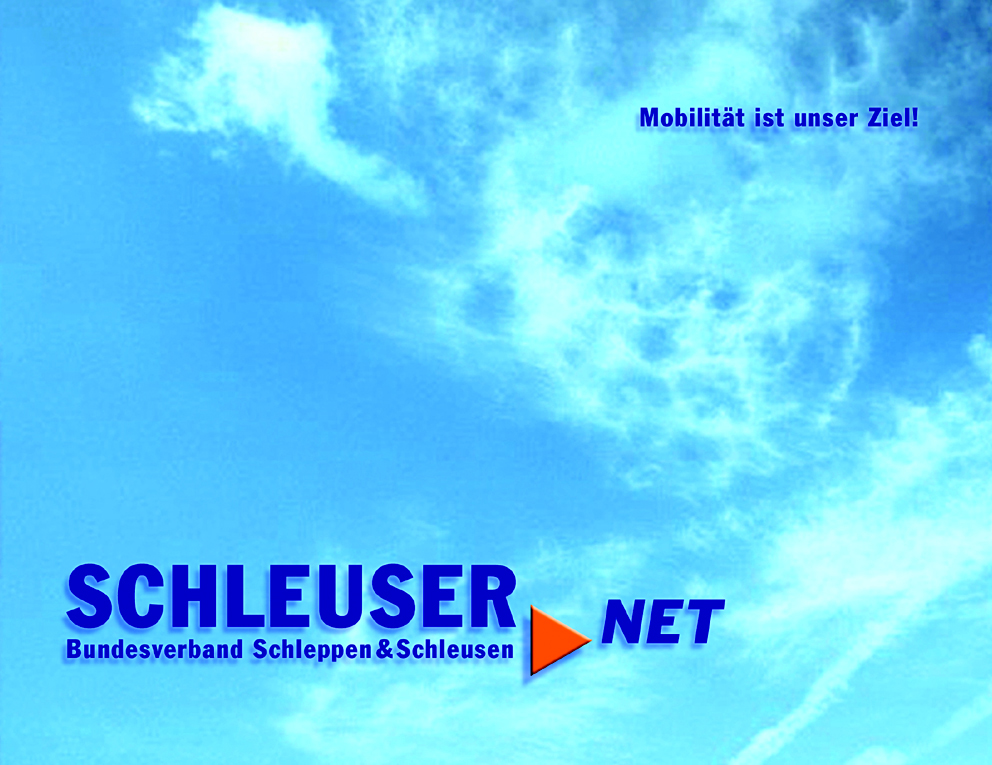collaboration_schleuser_net2.jpg